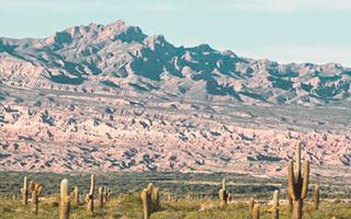 Parque Nacional de los Cardones