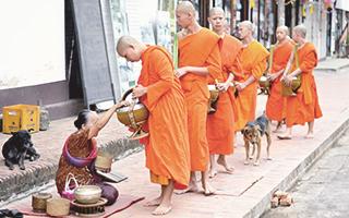 Ofrenda de comida a los monjes budistas