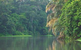 Parque Nacional de Tortuguero